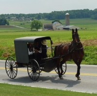 Traditional Amish buggy, Lancaster County, Pennsylvania, USA