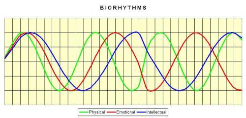 Biorhythms Chart